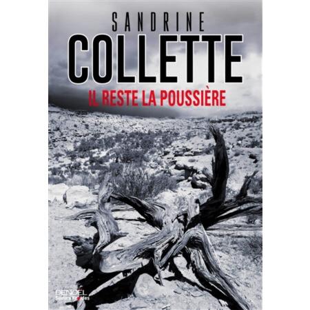 Sandrine Colette : Il reste la poussière