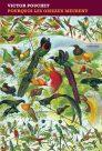Victor Pouchet : Pourquoi les oiseaux meurent