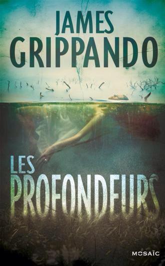 James Grippando : Les profondeurs