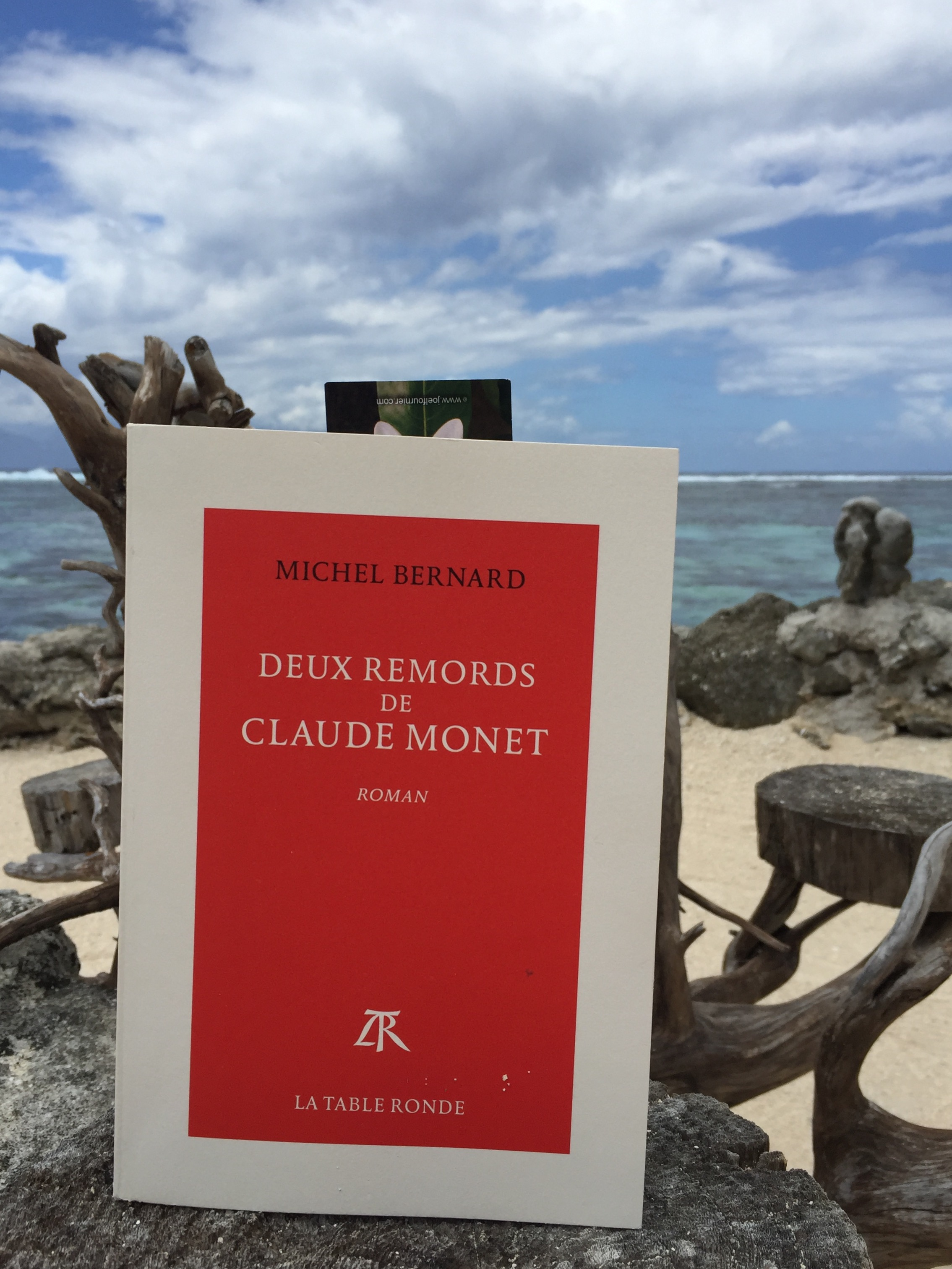 Michel Bernard : Les deux remords de Claude Monet