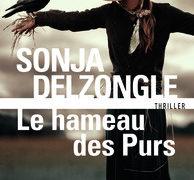 Critique de : Le hameau des purs de Sonja Delzongle