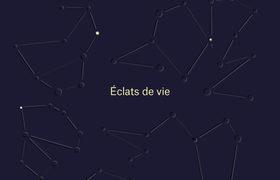 Chronique de : Constellations de Sinéad Gleeson